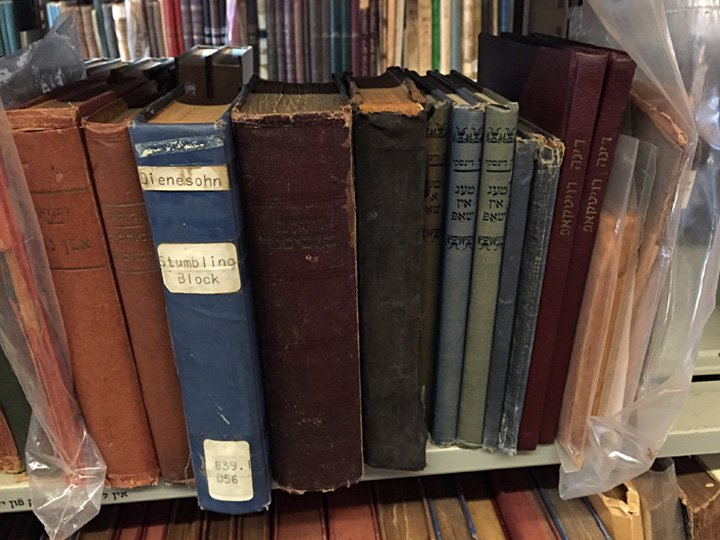 Shelf of Jacob Dinezon's Yiddish books